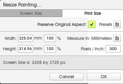 Edit Resize Painting menu in ArtRage 5 with Preserve Original Aspect ticked