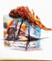 Artist Feature: Donna Coburn