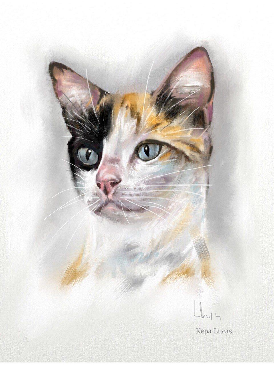 Anonymous Cat by Kepa Lucas