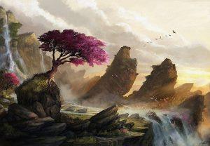 Blossum Sunset by Steve Goad