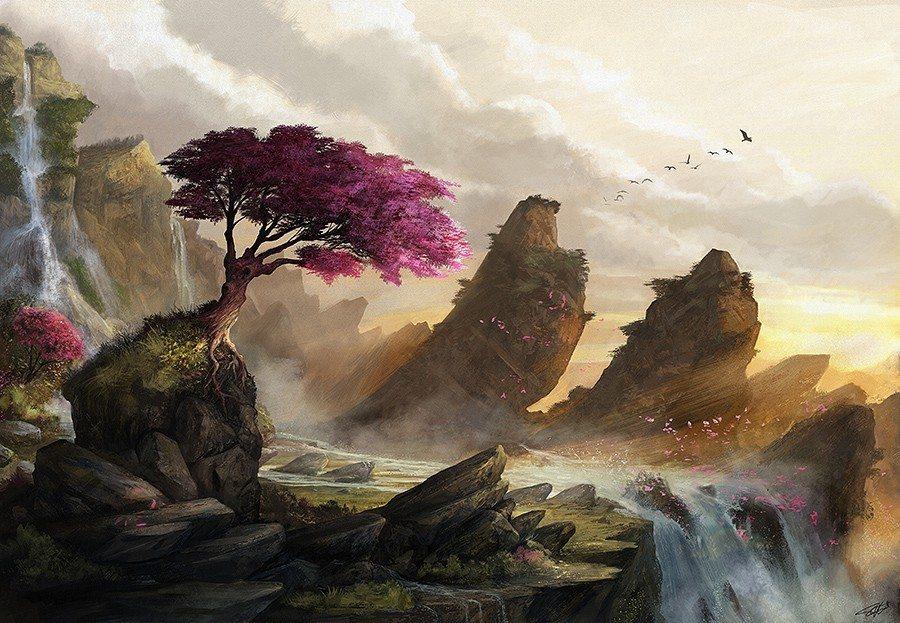 Blossom Sunset by Steve Goad