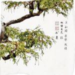 Bonsai Art I 12x12 Brian Coffey Featured ArtRage Artist