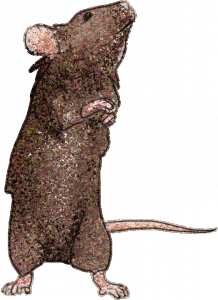 Glitter Mouse