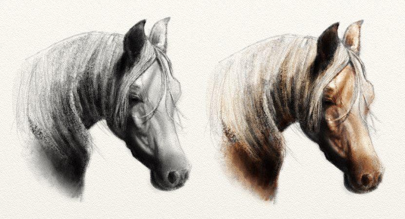 Horse Pencil Sketch Multiply Blend Mode