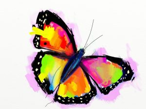 Butterfly by Fernando Madeira