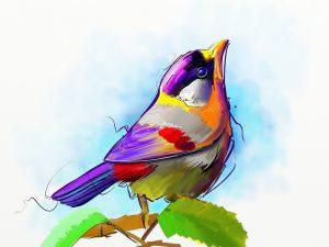 Bird by Fernando Madeira