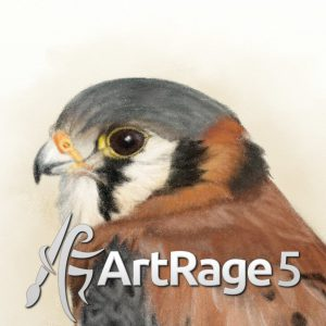 Kestrel pencil square ArtRage 5 1