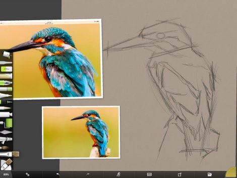 Kingfisher Screenshot 1 by Shelly Hanna