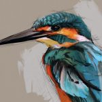 Kingfisher Crop by Shelly Hanna