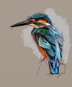 Kingfisher by Shelly Hanna