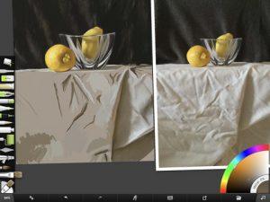 Lemon Study Screenshot by Shelly Hanna