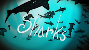 """""""Sharks"""" Still image from 'Painted Titles for a Song"""""""