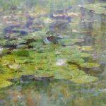Monet Lilies 16x40 Brian Coffey Featured ArtRage Artist