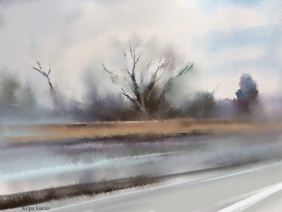 On the road by Kepa Lucas