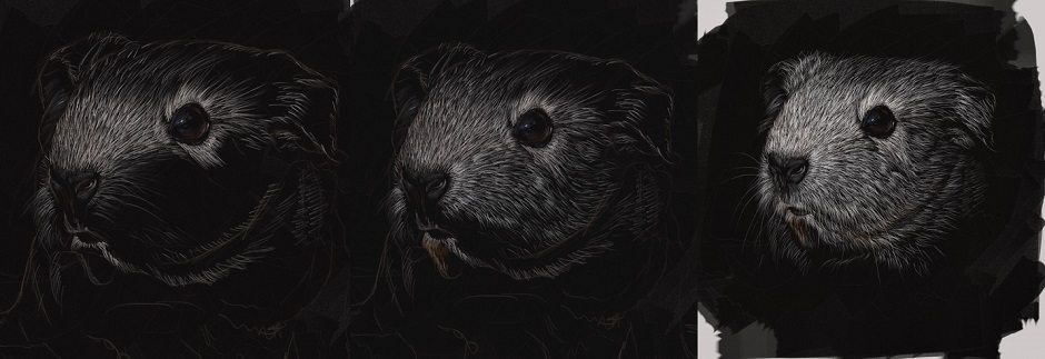 Scratchboard Guinea Pig by Shelly Hanna