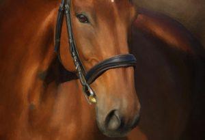 Zorro artrage art by Stephen Rasche-Hilpert