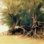 Roots by Hatamarihann