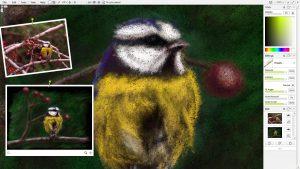 bird coloured pencil docking mode screenshot 2