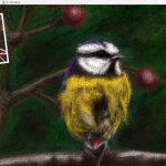 bird coloured pencil workbench screenshot 2