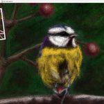 bird coloured pencil workbench screenshot 2