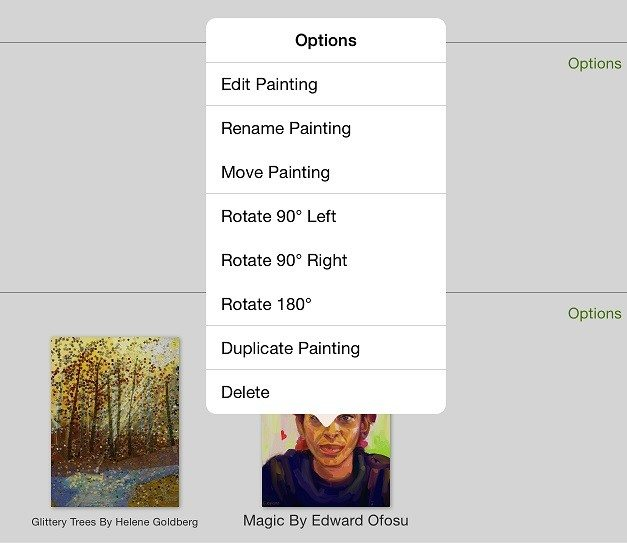 ArtRage for iPad gallery options