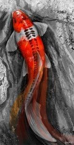 Koi Painting by Steve Goad