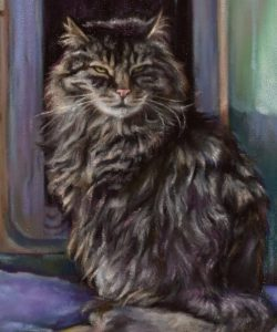 Pastel cat close up by Ramona MacDonald in ArtRage 5