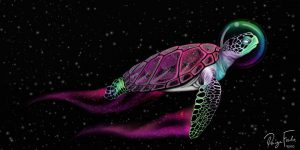 watercolor turtle by Paige Fowler Sour Candy Arts